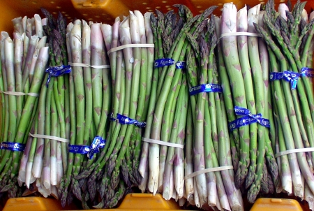 First of the season asparagus from Alvarez Organic Farms in Mabton. Photo copyright 2009 by Zachary D. Lyons.