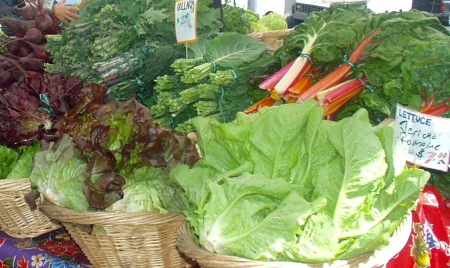 A typical display of bounty from Oxbow Farm -- this scene from 2007. Photo copyright 2007 by Zachary D. Lyons.