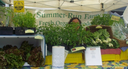 Summer Run's Cathryn Baerwald is back behind those tomato plants somewhere. Photo copyright 2009 by Zachary D. Lyons.
