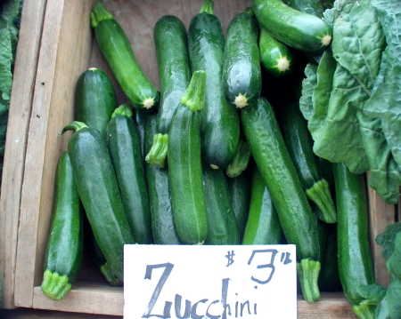 Full Circle zucchini. Photo copyright 2009 by Zachary D. Lyons.