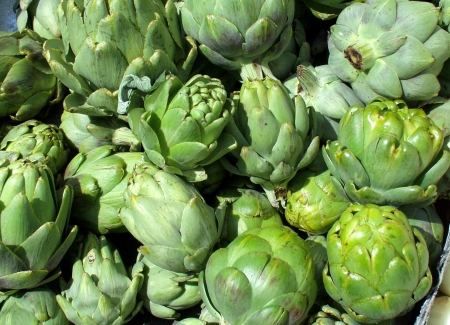 Organic artichokes from Alm Hill Gardens. Photo copyright 2009 by Zachary D. Lyons.