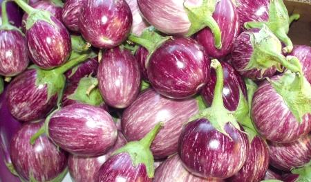 Purple Rain eggplant from Alvarez. Photo copyright 2009 by Zachary D. Lyons.