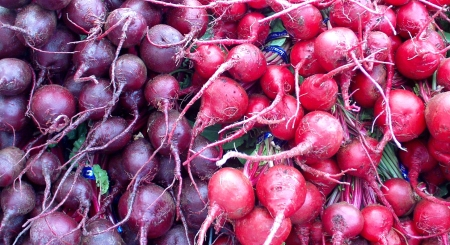 Detroit and chiogga beets from Boistfort Valley Farm. Photo copyright 2009 by Zachary D. Lyons.