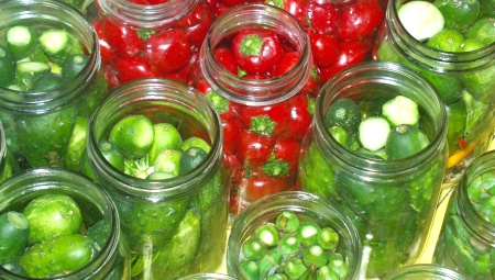 Jars packed with vegetables, ready for pickling. Photo copyright 2005 by Zachary D. Lyons.