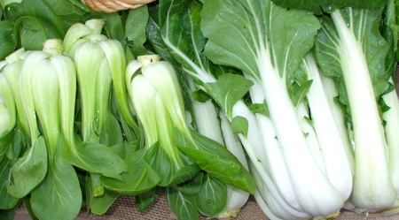 Bok choy (right) and baby bok choy from Red Barn Farm. Photo copyright 2009 by Zachary D. Lyons.