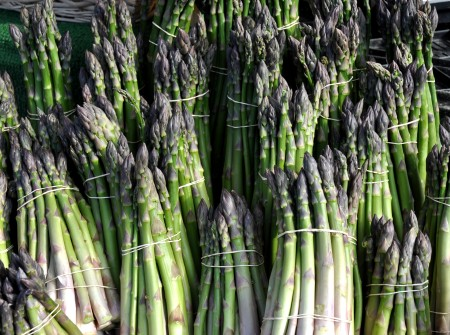 Asparagus from Alm Hill Gardens. Photo copyright 2011 by Zachary D. Lyons.