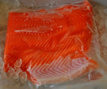 Fresh, Washington coastal red king salmon from Wilson Fish at Ballard Farmers Market. Copyright 2014 by Zachary D. Lyons.