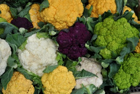 Cauliflower from Growing Things Farm. Photo copyright 2011 by Zachary D. Lyons.