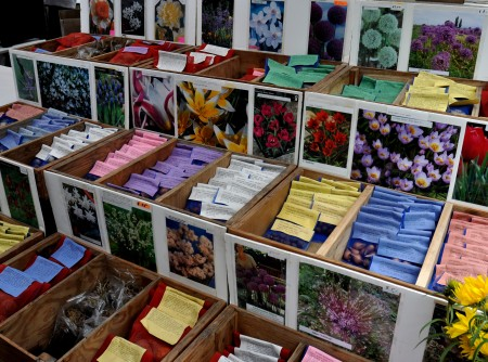 A dizzying variety of flower bulbs from Choice Bulb Farm. Photo copyright 2011 by Zachary D Lyons.