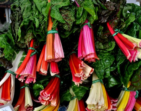 Rainbow chard from Oxbow Farm. Photo copyright 2011 by Zachary D. Lyons.