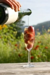 Sparkling Cider from Finnriver Farm and Cidery Copyright Zachary D Lyons