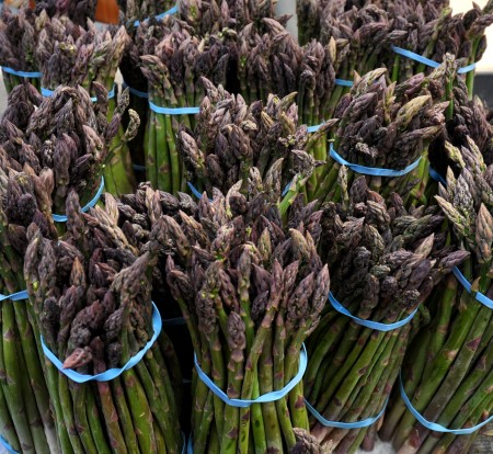 It's asparagus time again! Photo copyright 2011 by Zachary D. Lyons.