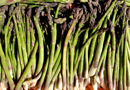 Asparagus from Magana Farms. Photo copyright 2012 by Zachary D. Lyons.