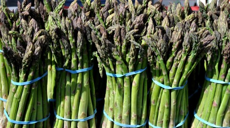 Organic asparagus from ACMA Mission Orchards. Photo copyright 2012 by Zachary D. Lyons.
