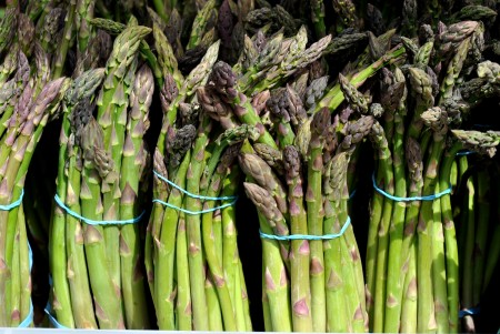 Organic asparagus from Alvarez Organic Farms. Photo copyright 2014 by Zachary D, Lyons.