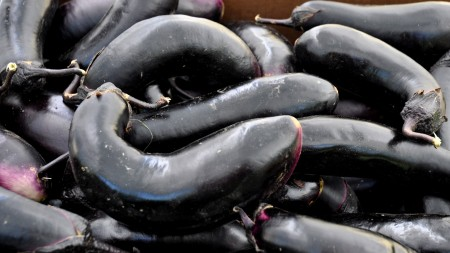 Japanese eggplant from Alvarez Organic Farms. Photo copyright 2012 by Zachary D. Lyons.