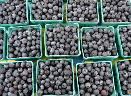 Certified organic blueberries from Whitehorse Meadows Farm. Photo copyright 2012 by Zachary D. Lyons.