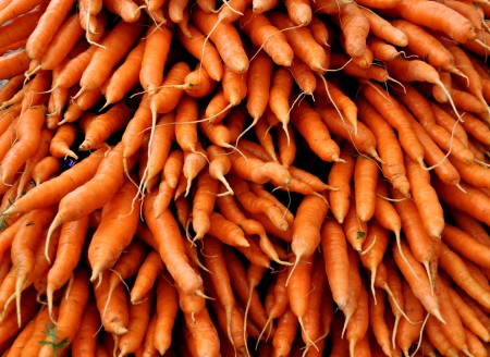Carrots from Boistfort Valley Farm. Photo copyright 2012 by Zachary D. Lyons.