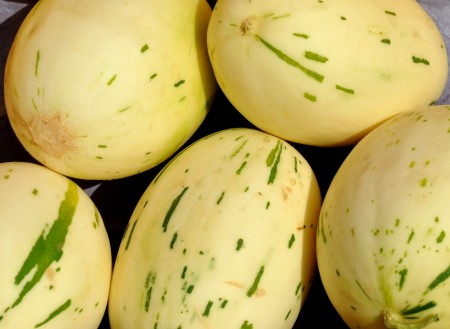 Snow Leopard melons from Tiny's Organic Produce. Photo copyright 2012 by Zachary D. Lyons.