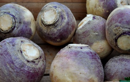 Rutabagas from Boistfort Valley Farm at Ballard Farmers Market. Copyright Zachary D. Lyons.