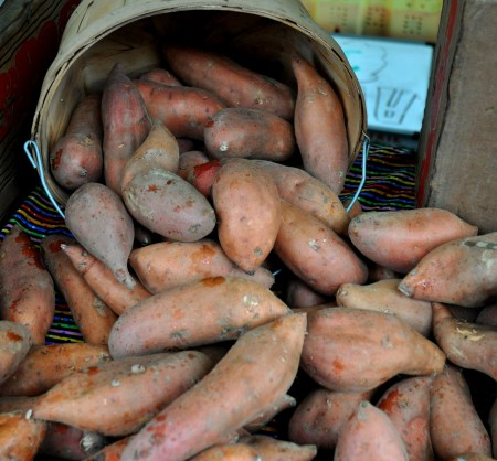 Sweet potatoes from Lyall Farms at Ballard Farmers Market. Copyright Zachary D. Lyons.