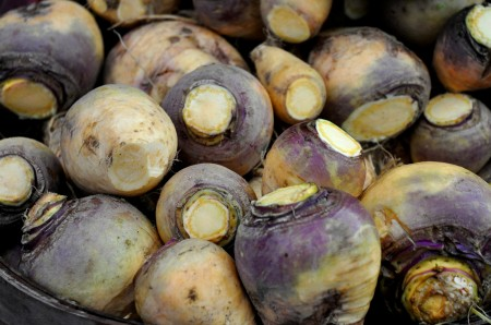 Rutabagas from Nash's Organic Produce at Ballard Farmers Market. Copyright Zachary D. Lyons.
