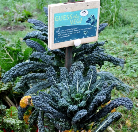 One of the many educational displays at Oxbow Farm. Photo copyright 2012 by Zachary D. Lyons.