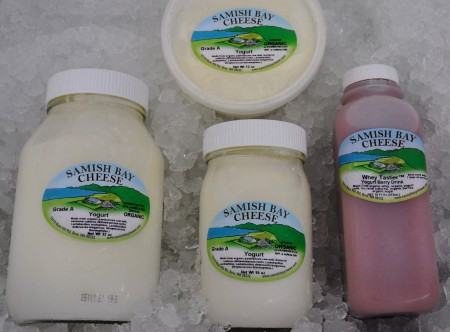 Yogurt from Samish Bay Cheese. Photo copyright 2012 by Zachary D. Lyons.