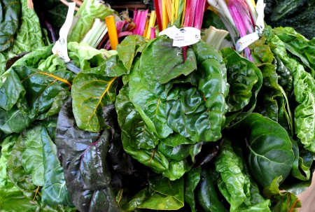 Rainbow chard from Full Circle Farm. Photo copyright 2013 by Zachary D. Lyons.