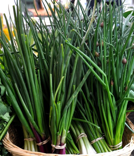 Green onions from Gaia's Natural Goods. Photo copyright 2013 by Zachary D. Lyons.