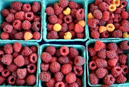 Raspberries from Gaia's Harmony Farm. Photo copyright 2013 by Zachary D. Lyons.