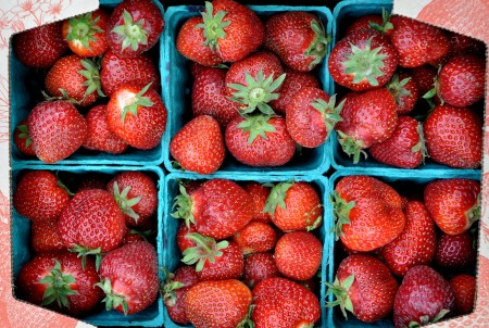 Strawberries from Hayton Berry Farms. Photo copyright 2013 by Zachary D. Lyons.