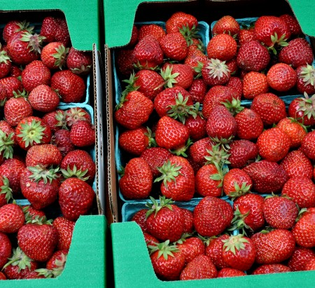 Strawberries from Jessie's Berries. Photo copyright 2013 by Zachary D. Lyons.