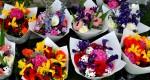 Pa Garden Flowers Copyright Zachary D Lyons