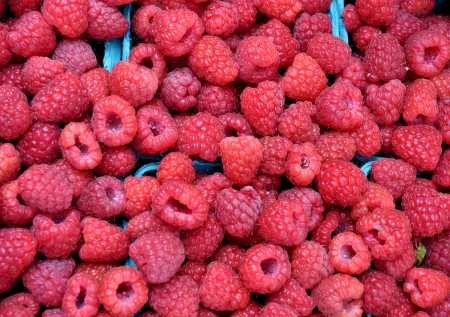Raspberries from Sidhu Farms. Photo copyright 2013 by Zachary D. Lyons.