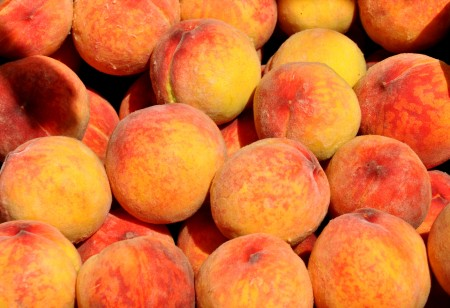 Red Haven peaches from ACMA Mission Orchards. Photo copyright 2013 by Zachary D. Lyons.