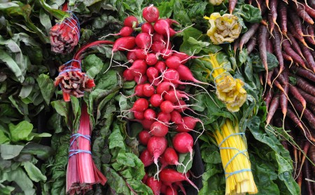 A colorful display from Boistfort Valley Farm. Photo copyright 2013 by Zachary D. Lyons.