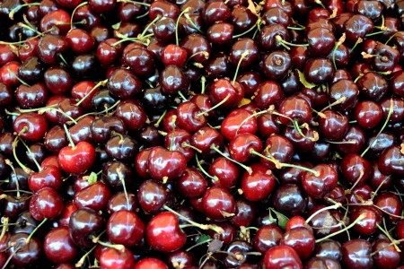 Vans cherries from Collins Family Orchards. Photo copyright 2013 by Zachary D. Lyons.