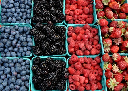 Blueberries, blackberries, raspberries and strawberries from Hayton Berry Farms. Photo copyright 2013 by Zachary D. Lyons.