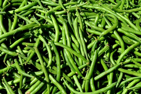 Green beans from Lyall Farms. Photo copyright 2013 by Zachary D. Lyons.