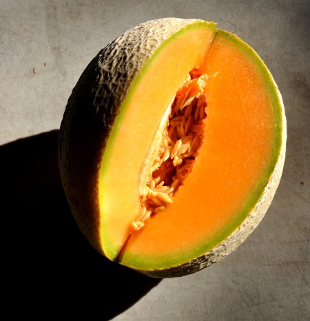 Cantaloupe melon from Alvarez Organic Farms. Photo copyright 2013 by Zachary D. Lyons.