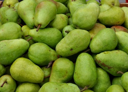 Bartlett pears from Collins Family Orchards. Photo copyright 2013 by Zachary D. Lyons.