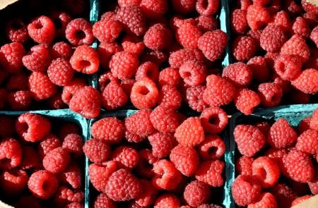Organic raspberries from Gaia's Harmony Farm. Photo copyright 2013 by Zachary D. Lyons.