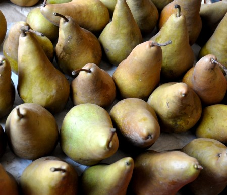 Bosc pears from Collins Family Orchards. Photo copyright 2013 by Zachary D. Lyons.