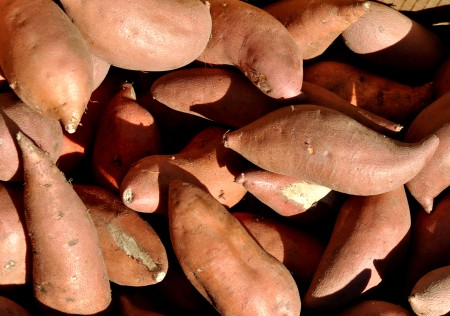 Sweet potatoes from Lyall Farms at your Ballard Farmers Market. Copyright Zachary D. Lyons.