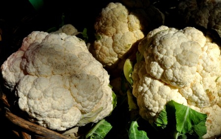 Cauliflower from Nash's Organic Produce. Photo copyright 2013 by Zachary D. Lyons.