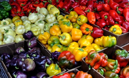 Sweet peppers from Alvarez Organic Farms. Photo copyright 2013 by Zachary D. Lyons.