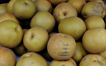 Asian pears from Collins Family Orchards. Photo copyright 2013 by Zachary D. Lyons.