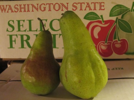 Concorde pears from Jerzy Boyz Farm. Photo courtesy Jerzy Boyz Farm.