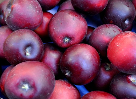 Arkansas Black apples from Tiny's Organic at Ballard Farmers Market. Copyright Zachary D. Lyons.